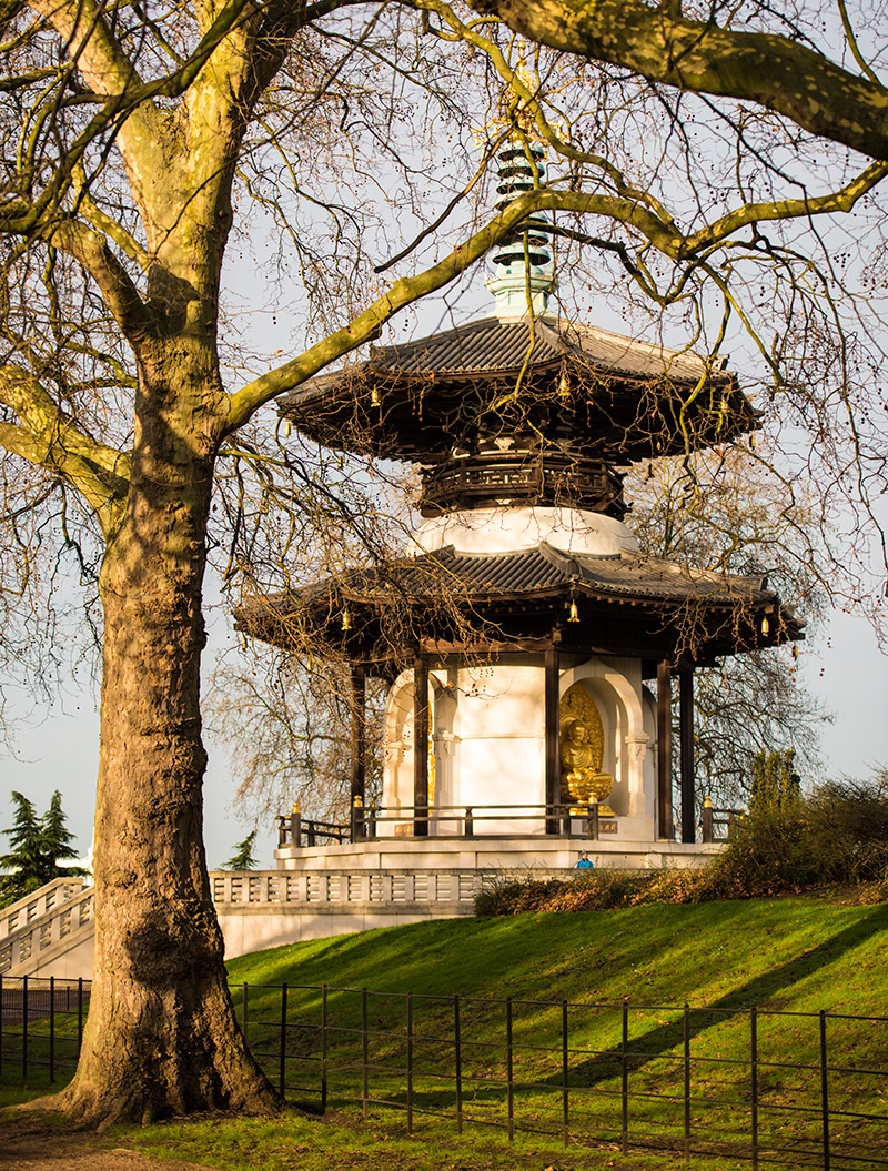 Battersea Park photography