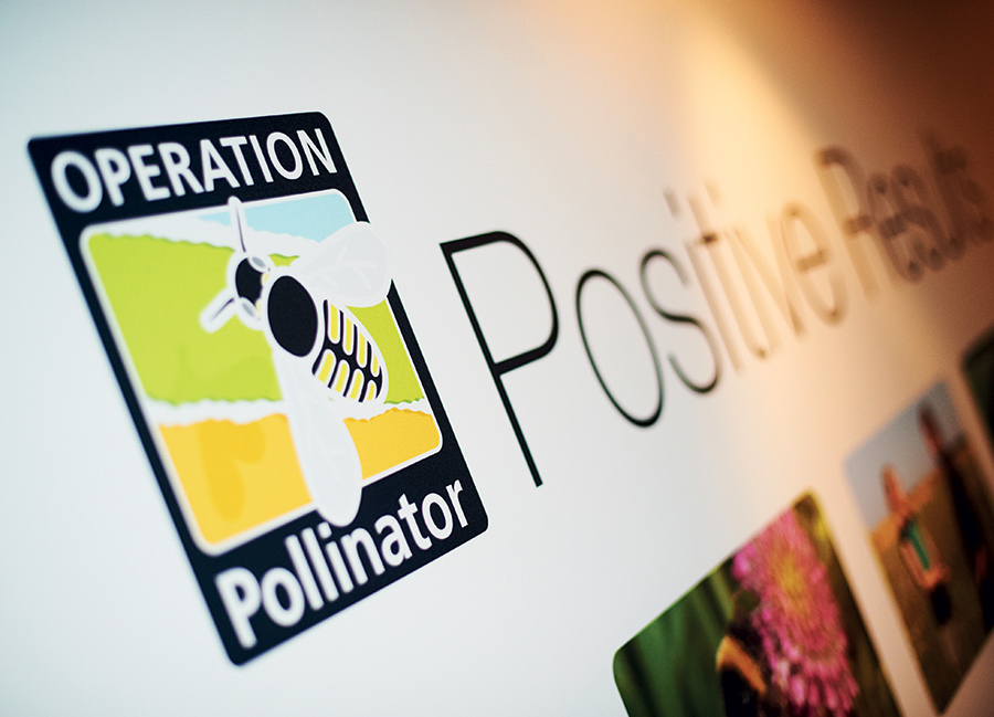 Syngenta Operation Pollinator