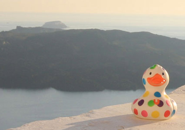 Bill the duck in Santorini
