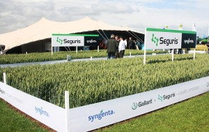 Syngenta UK Crop Protection cereals
