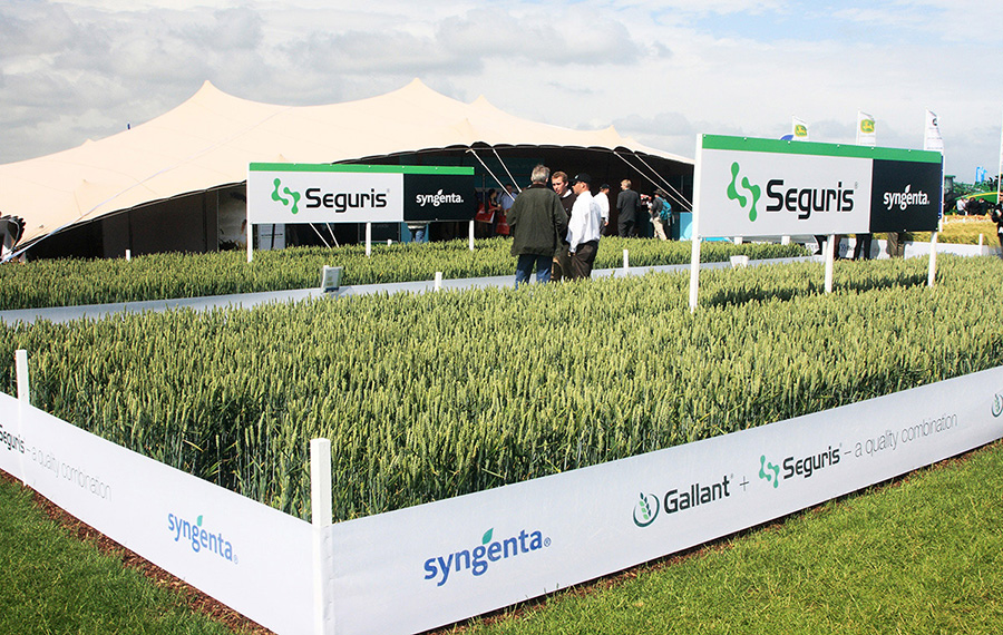 Syngenta UK Crop Protection cereals