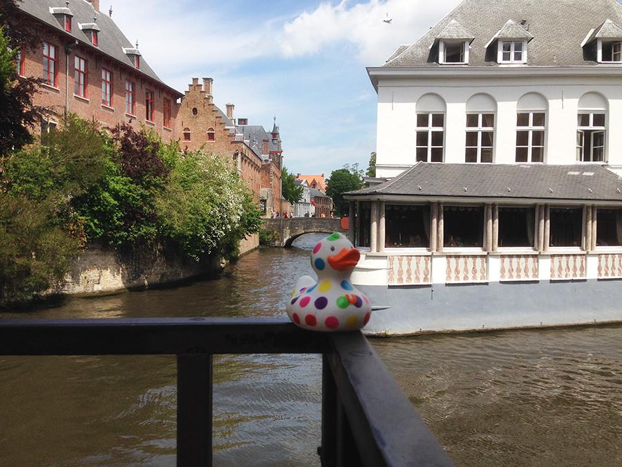 Bill visits Bruges