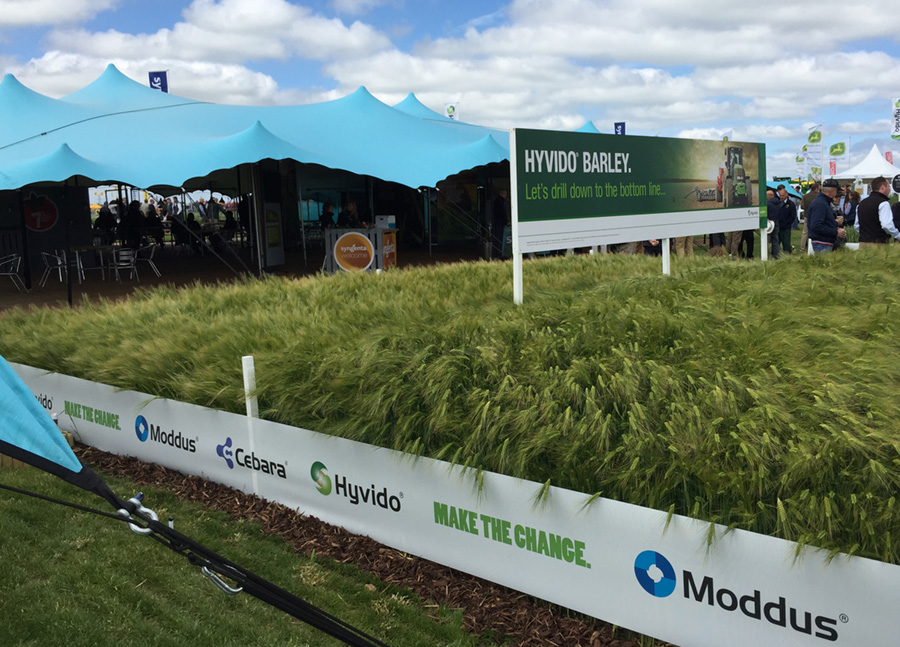 Syngenta – Cereals Event 2015